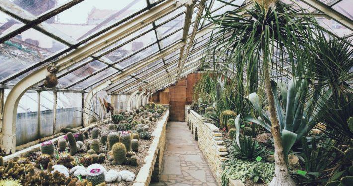 Garten-Bräuer-Garten-und-Landschaftsbau-Bottrop-Grünanlagen